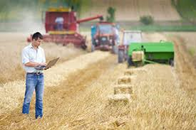 AG Business for Transfer AS T Degree and Management Certificate   Learning and Career Pathway