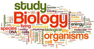 Biology for Transfer AS T Degree   Learning and Career Pathway