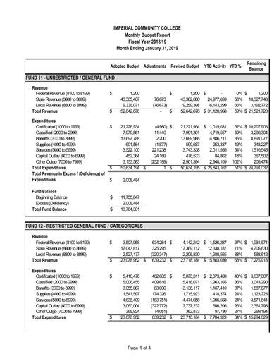 2019-01 Budget Report Jan 2019